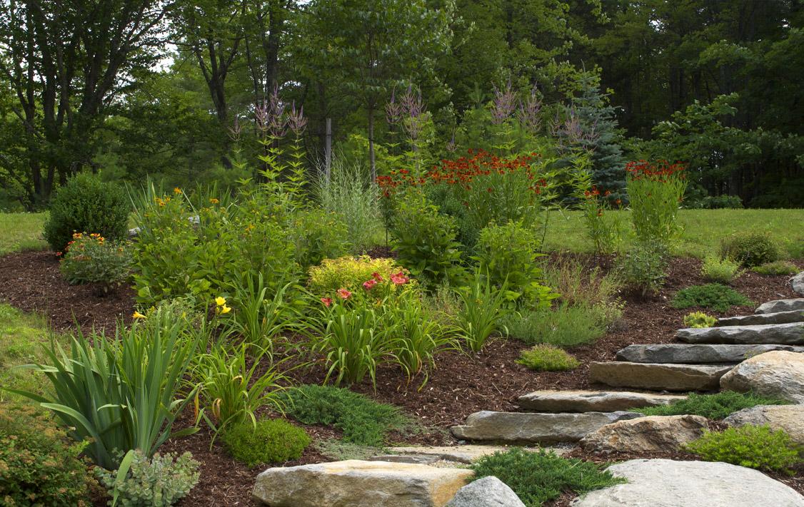 glebe-landscaping